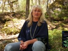 Naturens hemlighet av Eva Sanner Förlag Bladh by Bladh