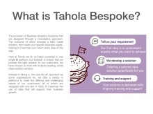 Tahola - Bespoke Business Intelligence Solutions