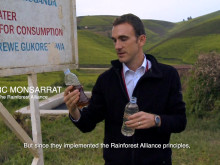 Postkodstiftelsen - Rainforest Alliance