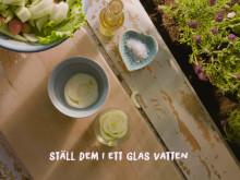 Smarta tips från Weibulls - återplantera!