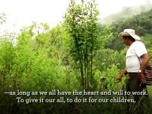 Framgångsrikt klimatarbete bland kaffeodlare i Oaxaca, Mexiko