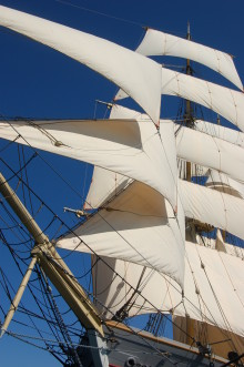 Tre Kronor trea i The Tall Ships´ Races