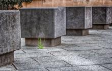 """Pfullingen für ein prima Klima """"Steinwüste ade! – Klimaschutz im Vorgarten"""""""