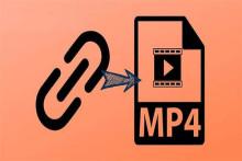 Mit kostenlosen Tools schnell von URL in MP4 umwandeln