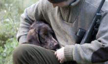 Skyddsväst för jakthundar