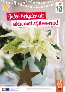 POS Poster Julstjärna 2018 vit