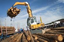 Tre nya områden på största skogsmässan någonsin
