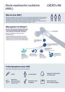 Factsheet: Akute myeloische Leukämie (AML)