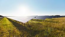 Chr. Hansens gode bakterier skal fremstilles på solenergi