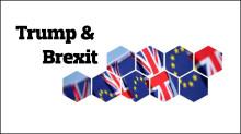 2016 endte med positive afkast trods Trump og Brexit