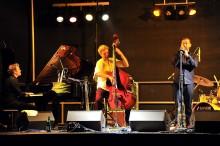 Funk, Groove, Rhythmus: Die Jazz-Nacht im Zoo
