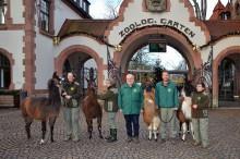 Südamerika-Eröffnung und 140. Geburtstag - Zoo Leipzig startet ins Jahr 2018