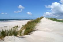 Nie ohne Wasser: Spontaner Traumurlaub im dänischen Ostseeraum mit Scandlines