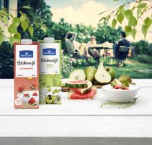Norrmejerier presenterar årets Solskensfiler – härliga sommarsmaker på tillfälligt besök.