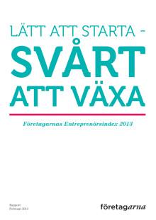Entreprenörsindex 2013