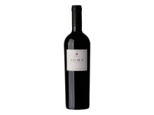 Terroir från Chile - exklusiv lansering av prisbelönta Koyle Auma, ett vin med stor lagringspotential