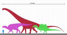 Människan är en dinosaurie