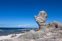 Malmberg renar vatten på Gotland