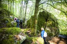 Välkommen till Hovdala vandringsfestival!