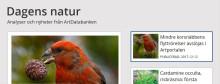 Dagens natur – nyheter och analyser om biologisk mångfald, arter och naturvård
