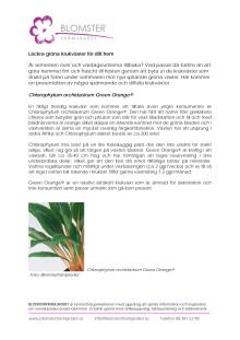 Läckra gröna krukväxter för ditt hem