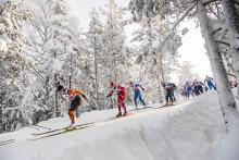 Här är idrotterna för SM-veckan vinter Borås 2021
