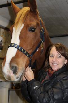Gas får hästen må bättre under och efter sövning