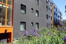 Solheimslien borettslag forbedrer både energibruk, bokomfort og utseende