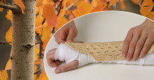 POLITISK HEARING OM BENSKÖRHET:  Aktuell rapport om dagens osteoporosvård