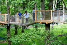 Investering i upplevelser ökar antalet besökare till Skånes Djurpark