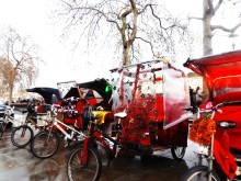 Crackdown on illegal pedicabs