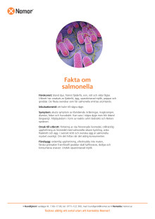 Fakta om salmonella