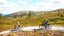 5 år med sykkelsatsing har gitt eventyrlig vekst