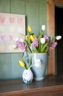 Börja året med nyskördade tulpaner!