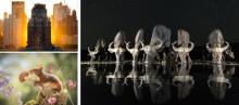 Svenske Andreas Hemb nominerad i världens största fototävling- Sony World Photography Awards