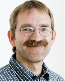 David Stephansson
