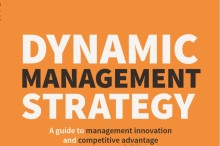 Ny bok: Dynamic Management Strategy