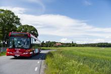 Sommarutflykten behöver inte kosta mer än en bussbiljett!