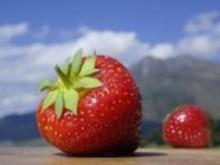 Südtiroler Erdbeerfest im Martelltal
