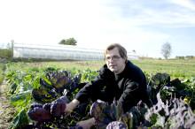 Smarta samarbeten viktiga för lönsam odling
