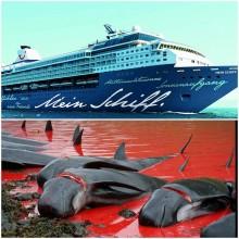 TUI Cruises distanziert sich vom Walfang und stoppt vorübergehend Anlandungen auf den Färöer-Inseln
