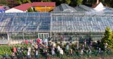 """Hephata-Gärtnerei als """"Vorbild für nachhaltigen Anbau von Blumen und Gemüse"""""""