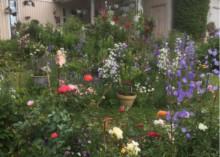 Tre trägårdar i Lindesberg med i Tusen Trädgårdar 2020