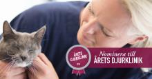 Sveriges djurägare ska rösta fram Årets djurklinik