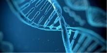BIOTECHNOLOGIE – DE NIEUWSTE TOEPASSINGEN IN DE GEZONDHEIDSZORG