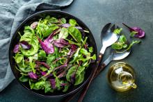 Salico bygger helt ny produktionslinje för baby leaves - ska kunna förse hela Skandinavien med ruccola och bladspenat