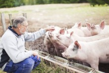 Sveriges arbete för att motverka antibiotikaresistens förebild i EU