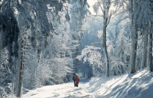 Vandring i Tyskland - På tur i Tysklands fineste naturparker.