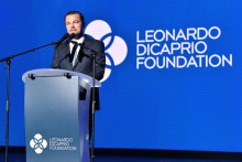Leonardo DiCaprio en av fem som kan vinna Utstickarpriset