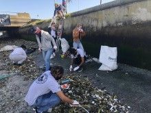 Cleaning up Cape Town's Black River Plastic Tsunami in the Time of Covid